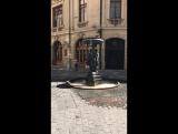 Голубь, фонтан, Сантьяго. Январь, 2017