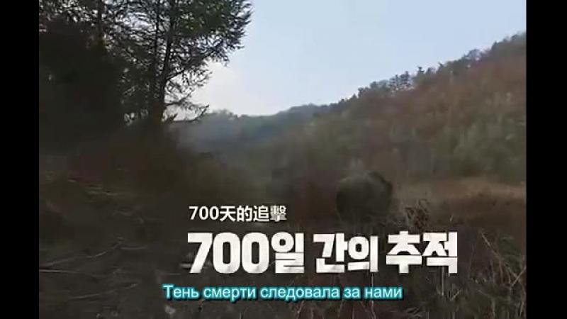 Трейлер документального фильма «DMZ The Wild» с Ли Мин Хо (руссаб)