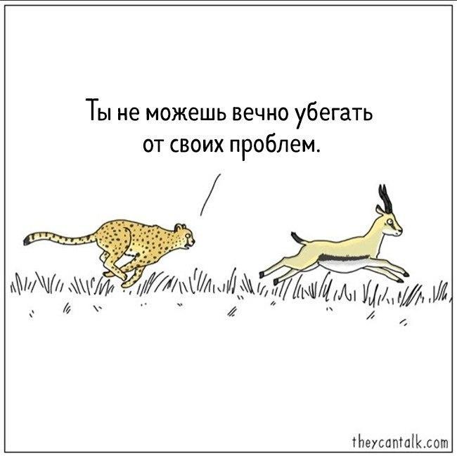 https://cs7066.userapi.com/c638430/v638430451/8d60d/8gw2PTdSiBw.jpg