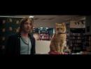 Уличный кот по кличке Боб  2017  ENG  WEB-DLRip