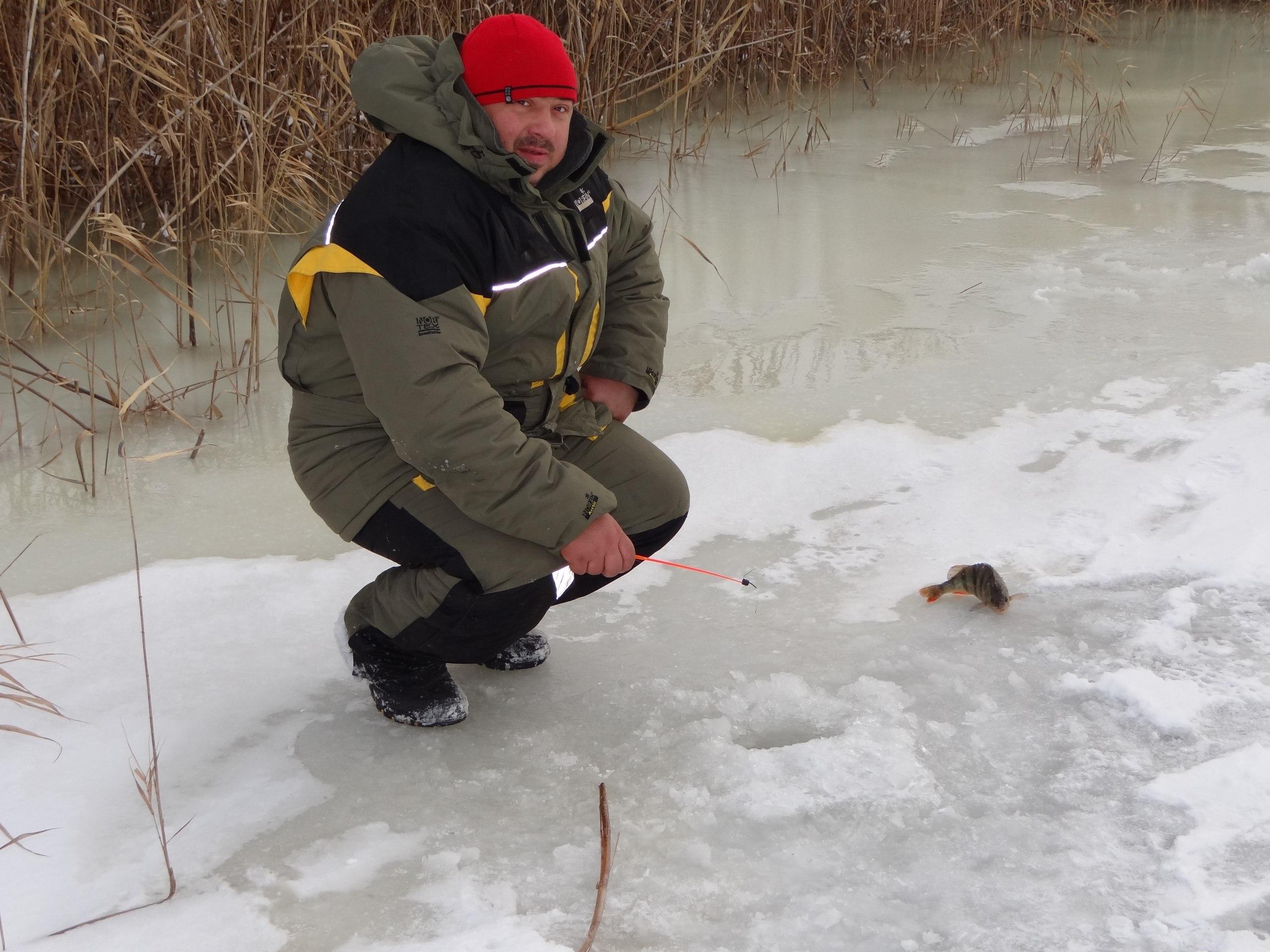 Ловим окуня зимой | База Застава