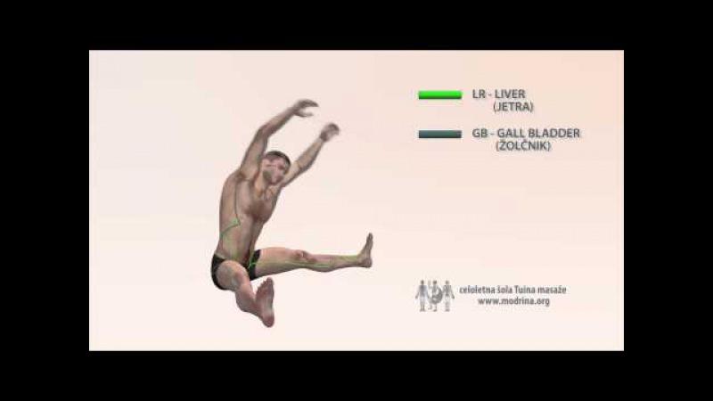 Exercise for meridians of LIVER and GALL BLADDER - Vaja za odpiranje meridijana LR in GB