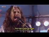 Steven Tyler - I Don't Want To Miss A Thing (Ac