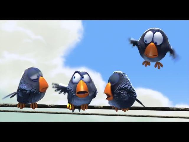 Смешной детский мультфильм про птичек