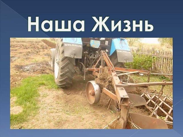 Наша жизнь \ Плетень \ Побелка \ Вспахали огород \ Обработка картошки