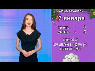 В Татарстане прогнозируется осадки в виде мокрого снега