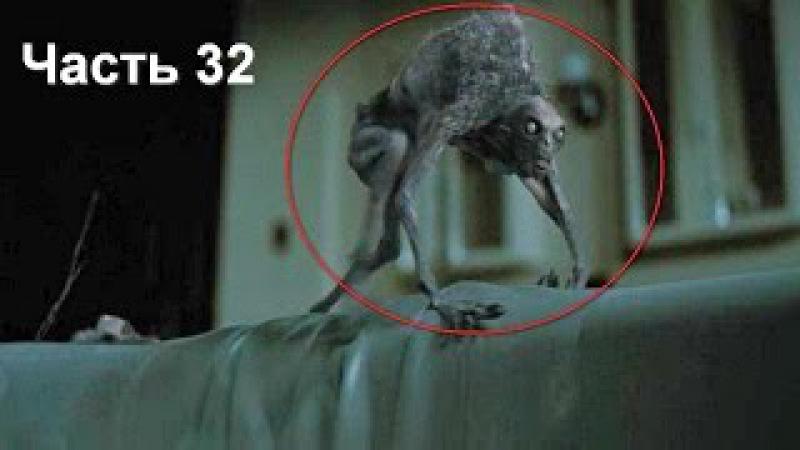 8 ОЧЕНЬ СТРАННЫХ ВИДЕО! Загадочные существа часть 32 » Freewka.com - Смотреть онлайн в хорощем качестве