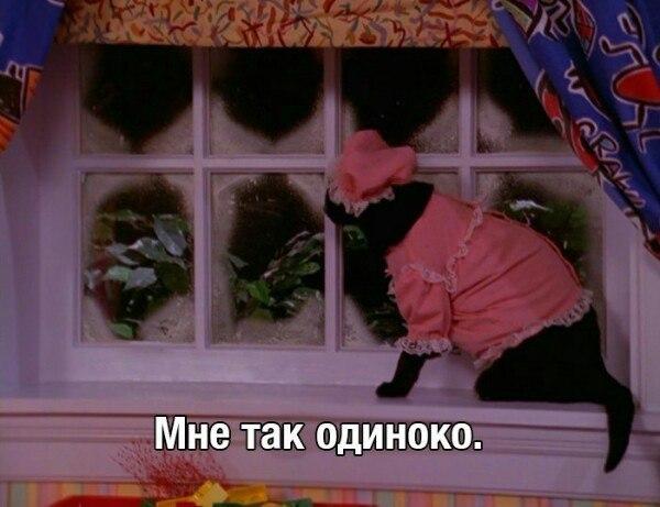 Фото №456266157 со страницы Валерии Андреевой