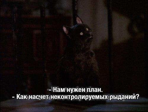 Фото №456266159 со страницы Валерии Андреевой
