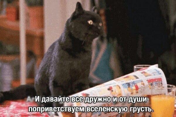 Фото №456266161 со страницы Валерии Андреевой