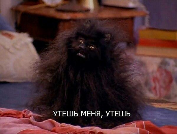 Фото №456266162 со страницы Валерии Андреевой