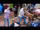 21.07.2017.Светлогорск! Самая длинная нитка бус из янтаря