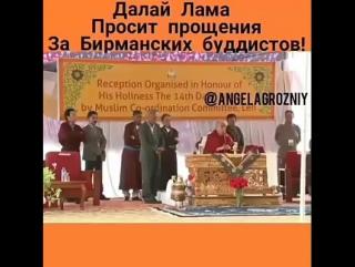 Далай Лама просит прощения за буддистов Мьянмы._inforce