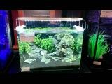 Светодиодный светильник для аквариумов DENNERLE Scapers LED