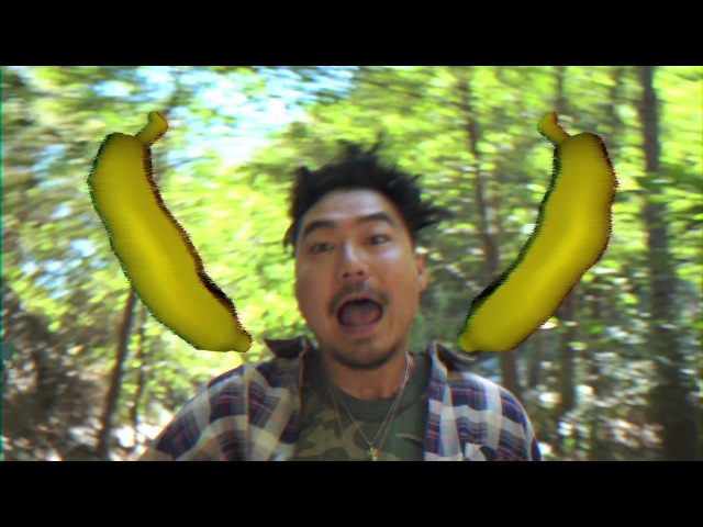 Dumbfoundead - Harambe (Prod By: Getter)