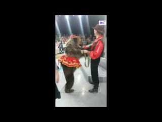 Woman Gets Man Handled By Bear On Live TV!