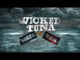 Дикий тунец Север против Юга 3 сезон 7 серия. Бывалые и суровые моряки 2016 - Видео D...