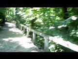 Ботанический сад в Клуж-Напока