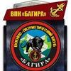 ☆ ВПК  «БАГИРА» имени Героя России С.А. Фирсова☆