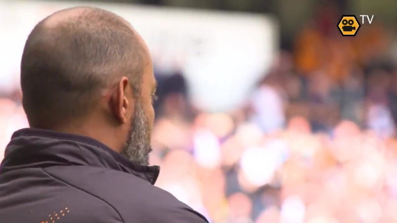 A view of Diogo Jota's goal from Wolves TV's pitch-side camera