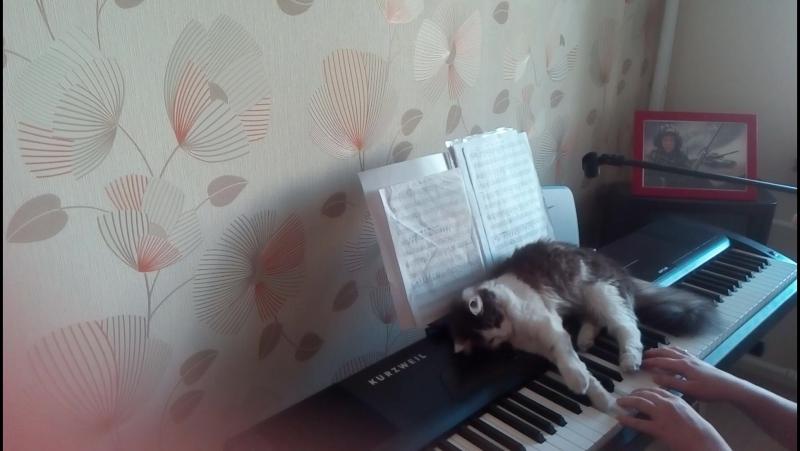 Кошка и матрёшка)