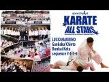 Lucio Maurino teaching Gankaku/Chinto Bunkai sequence # 2 & 3 - Karate All Stars 2013