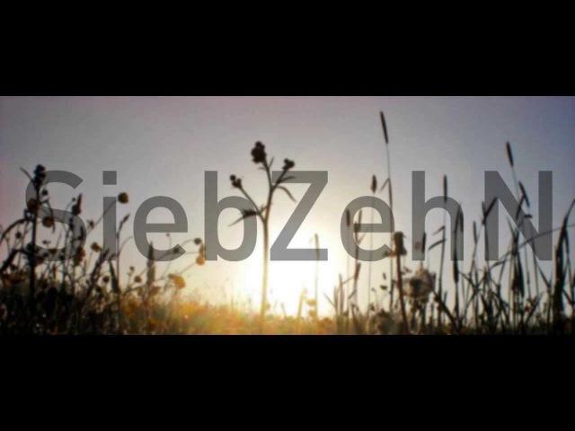 SiebZehN Miko - Live At Spiritual Healing Open Air 2009