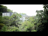 Marinha ataca Quilombo do Rio do Macaco - Sim