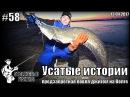 Усатые истории или предзапретная ловля джигом на Волге - 13.04.2017