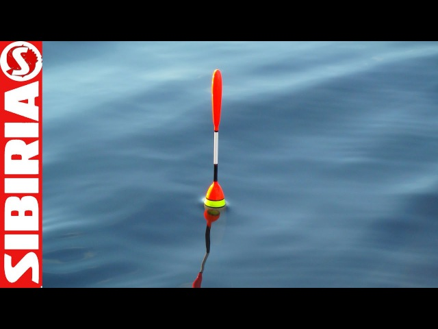 Рыбалка на поплавочную удочку Ловля карася Окунь на спиннинг рыбалка 2017 fishing