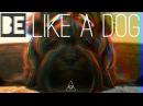 Be like a dog / Russian art house film 2017 / Быть собачкой