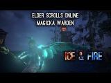 Magicka Warden Build PvE