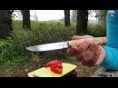 Северная Корона Лис Интеллигентные традиции Нож обзор тест