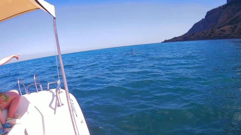Крым 2017г Коктебель В погоне за дельфином