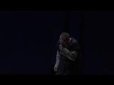 Wiener Staatsoper - Richard Wagner Siegfried (Вена, 28.05.2017) - Act III