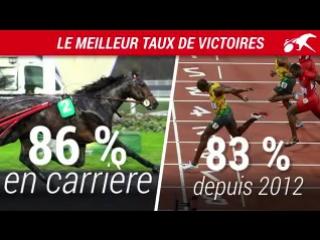Чемпионы: рысак Bold Eagle и спринтер Усэйн Болт Рио-де-Жанейро
