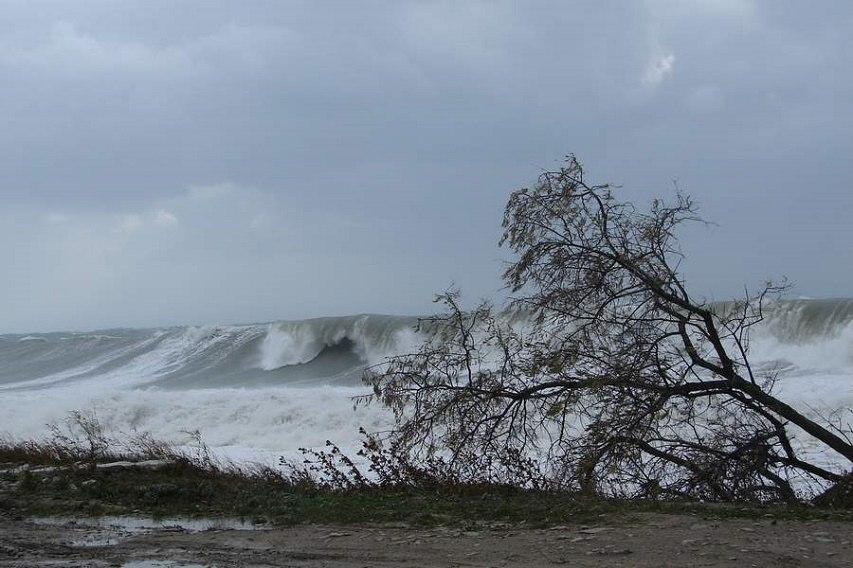 Администрация Таганрога: В ближайшие три часа ожидается усиление порывов ветра до 28 м/с