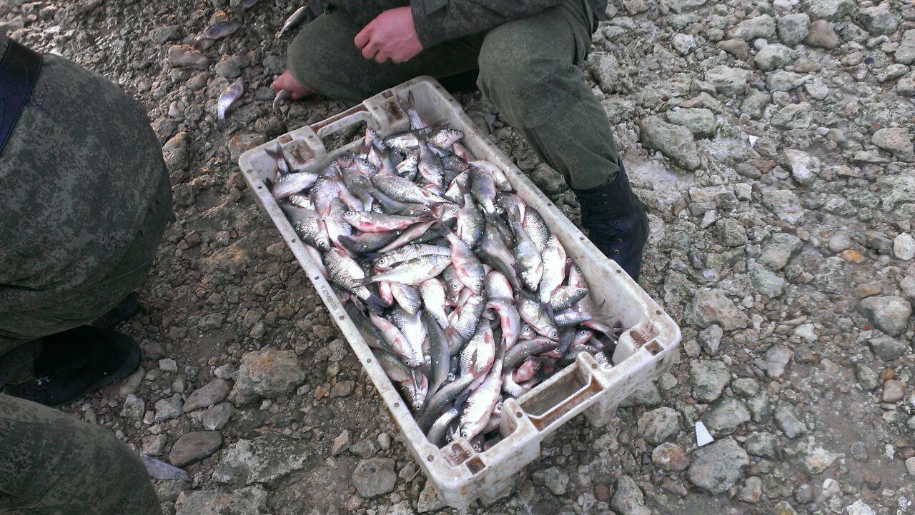 Под Таганрогом рядом с Красным Десантом задержали браконьеров с 1 тыс. особей тарани