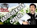 БЕЛОСНЕЖНАЯ СИРЕНЬ - поет баянист Вячеслав Абросимов авторская песня