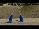 Фламинго в синих ботиночках.