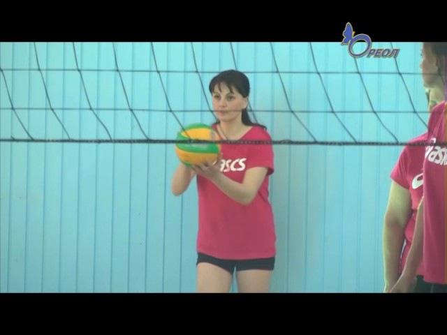 В Сланцевском спортивном комплексе «Шахтер» прошел кубок по волейболу среди же ...