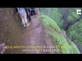Крутой спуск в Индии (VHS Video)
