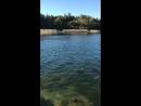 Курьезы на рыбалке случаются
