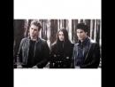 The Vampire Diaries   Дневники Вампира   VINE   Вайн