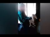 Бери его, кидай об стену. Подростки убили котёнка (18+)