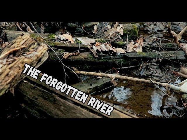 The Forgotten River | CINESTYLE AND COLOUR CORRECTION