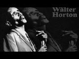 Big Walter Horton - Shake Your Money Maker  - Dimitris Lesini Blues
