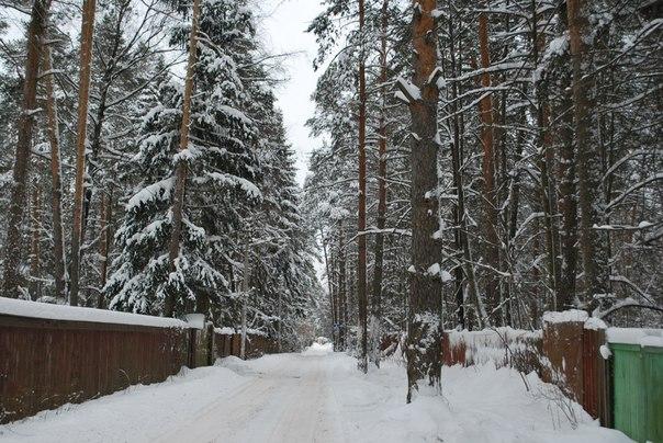 Московская область, Раменский район. поселок Кратово