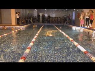 плавание красногорск колизей