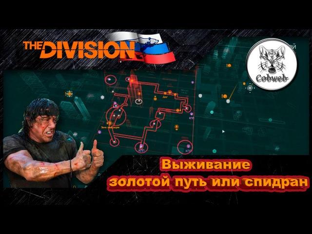 The Division | Выживание - золотой путь или спидран |